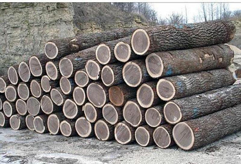 gỗ óc chó xẻ tròn